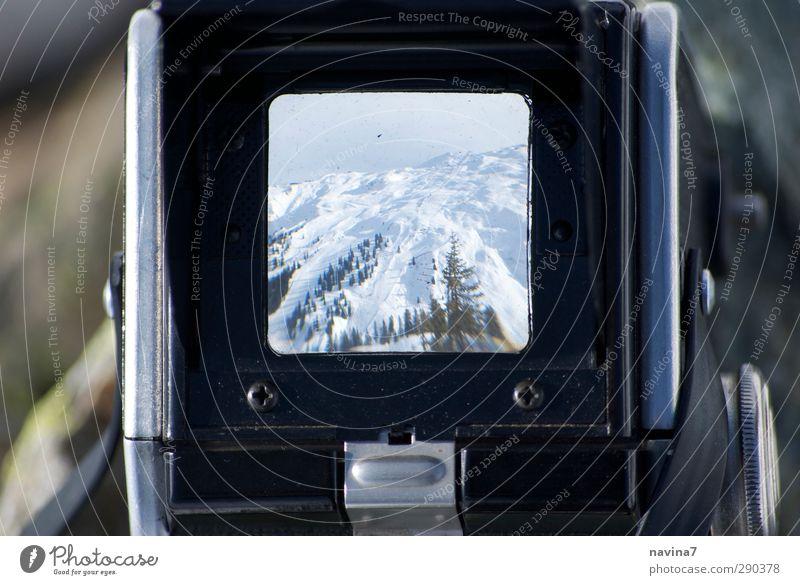Tanne Tourismus Winter Schnee Berge u. Gebirge Natur Landschaft Klima Alpen Schneebedeckte Gipfel beobachten Unendlichkeit kalt retro weiß Fernweh Kamerawurf