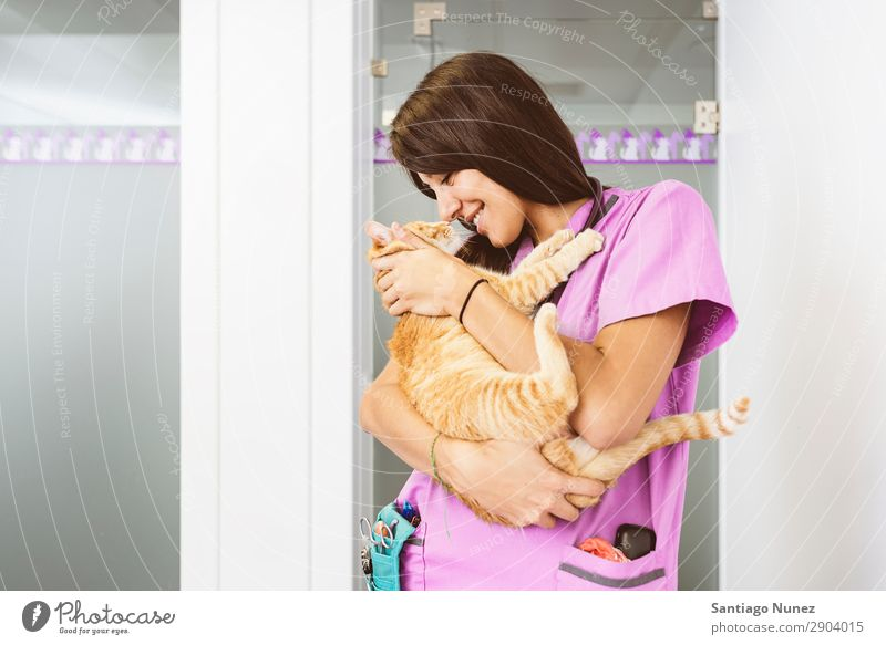 Tierarzt umarmt eine kleine Katze. Veterinär Klinik Arzt Krankenschwester Gesundheit Haustier Uniform professionell Arbeit & Erwerbstätigkeit Mitarbeiter Liebe