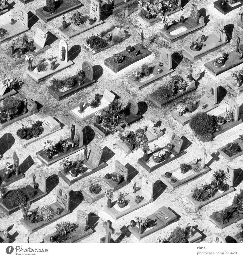 unterbesetzt | endlich ausschlafen Italien Park Friedhof alt historisch Stadt Güte trösten Traurigkeit Zufriedenheit Ewigkeit Gefühle Glaube Religion & Glaube