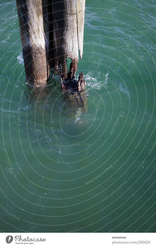 Wasserzahn der Zeit Natur Klima Unwetter Wind Sturm Baum Wellen Küste Seeufer Meer alt kaputt grün Pfosten Seezeichen Hafen ankern Zahn der Zeit zersetzt