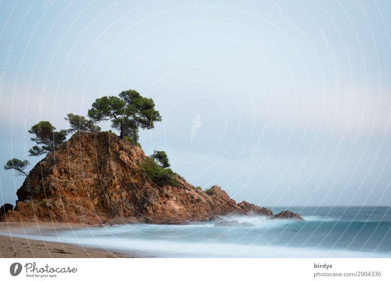 Idyll am Meer Himmel Ferien & Urlaub & Reisen Natur Sommer schön Wasser Baum ruhig Strand Küste außergewöhnlich Freiheit Felsen Horizont Wellen