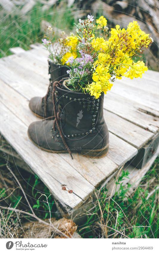Stiefel gefüllt mit Wildblumen Umwelt Natur Pflanze Frühling Sommer Blume Gras Blüte Wildpflanze Topfpflanze Leder Holz Blühend alt frisch Billig schön