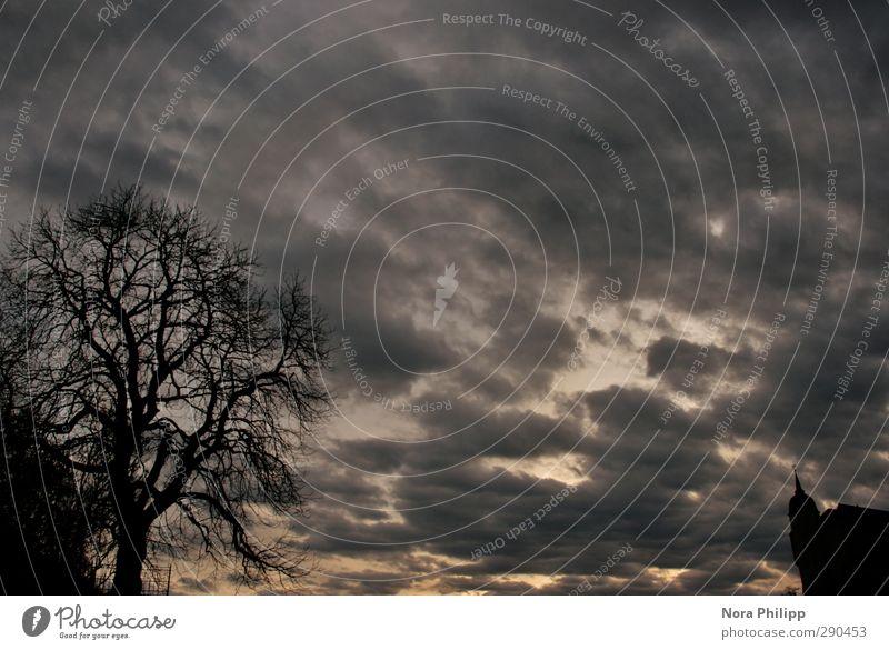 des mitternachts Wohnung Umwelt Himmel Wolken Gewitterwolken Nachthimmel schlechtes Wetter Baum Dom Burg oder Schloss Bauwerk Gebäude Traurigkeit Sorge Trauer