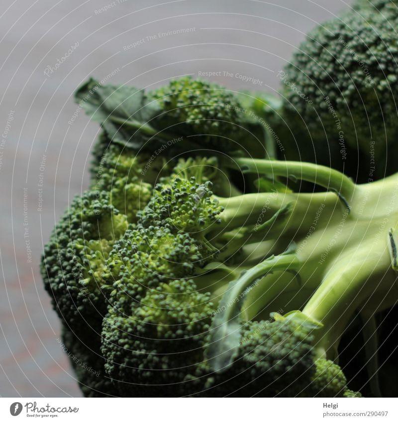 Vitamine... grün Leben Gesundheit braun liegen natürlich Lebensmittel authentisch frisch Ernährung ästhetisch einfach einzigartig Gemüse Reichtum bizarr