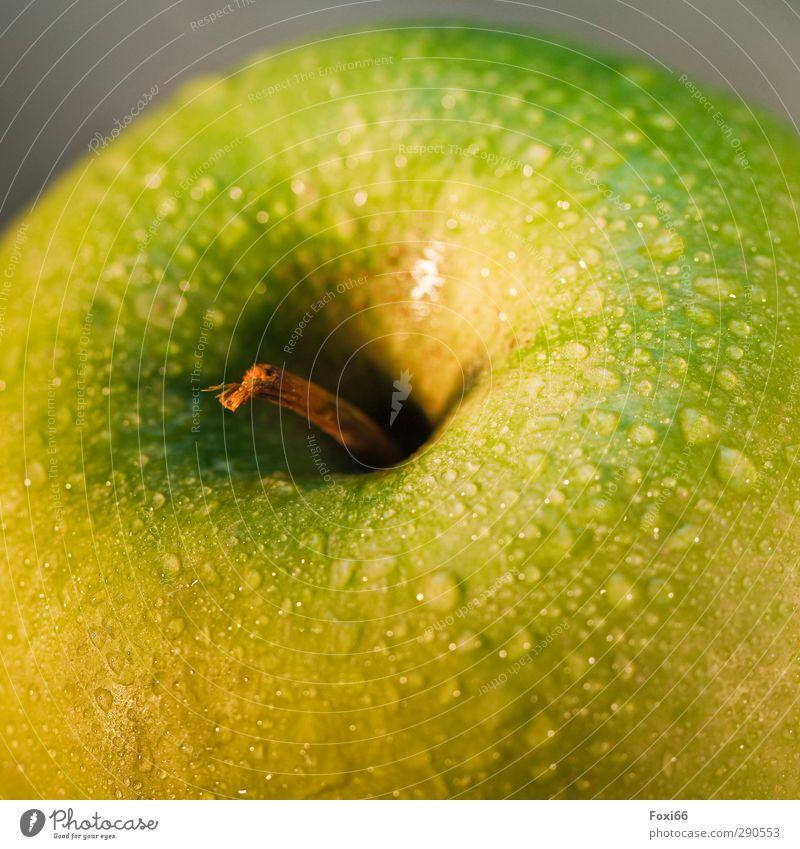 erst waschen dann essen...... grün Wasser gelb Leben Essen Gesundheit natürlich Frucht Lebensmittel Ernährung Wassertropfen süß rund Fitness genießen fest