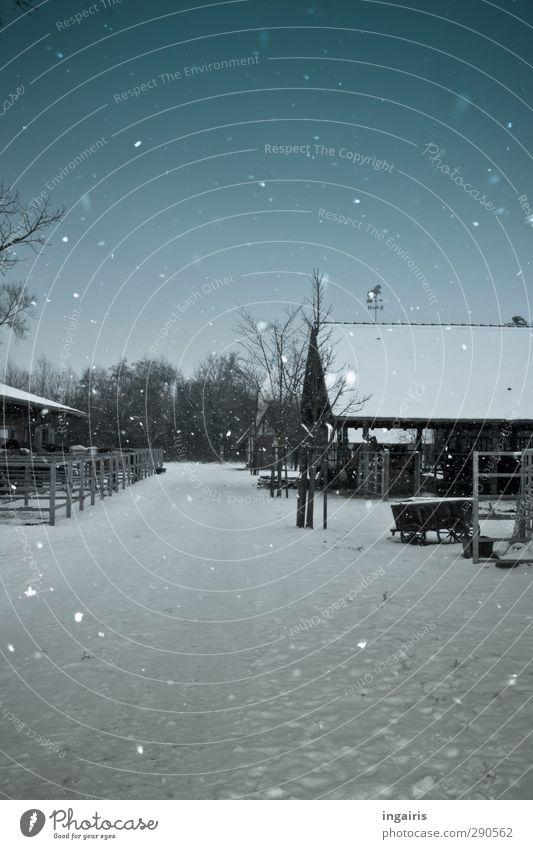 Weihnachten ist vorbei......der Winter auch? Himmel blau weiß Einsamkeit ruhig schwarz Umwelt kalt Schnee Gebäude natürlich Stimmung Schneefall Klima leuchten