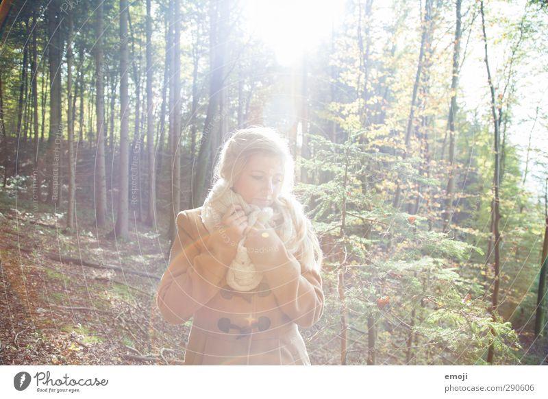 highlight Mensch Natur Jugendliche schön Wald Erwachsene Junge Frau Umwelt Herbst feminin 18-30 Jahre