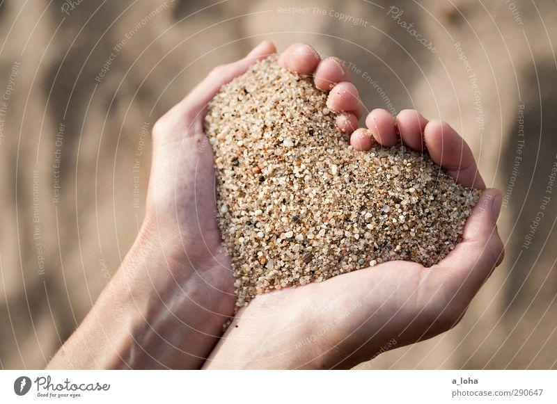 L.O.V.E. is in your hands Hand Meer Einsamkeit Strand Liebe Glück Sand braun gold Herz ästhetisch Romantik Zeichen festhalten Verliebtheit positiv