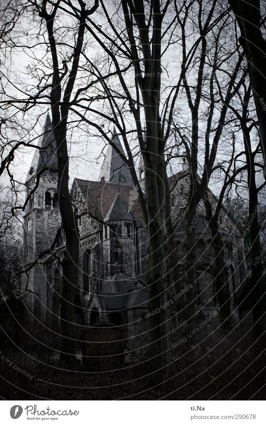Braunschweig blau weiß Baum Winter schwarz Wald gelb dunkel grau Religion & Glaube Park groß stehen Kirche silber