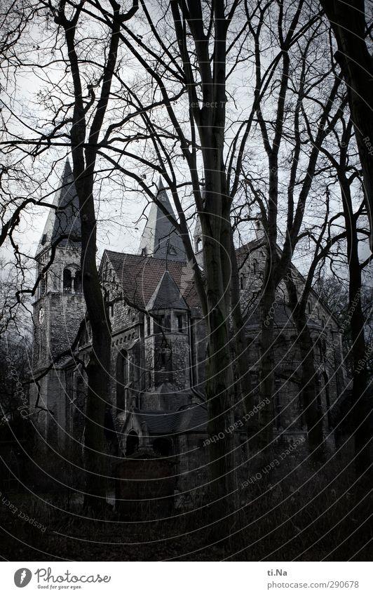 Braunschweig Winter schlechtes Wetter Baum Park Kirche Sehenswürdigkeit stehen dunkel groß blau gelb grau schwarz silber weiß Glaube Religion & Glaube