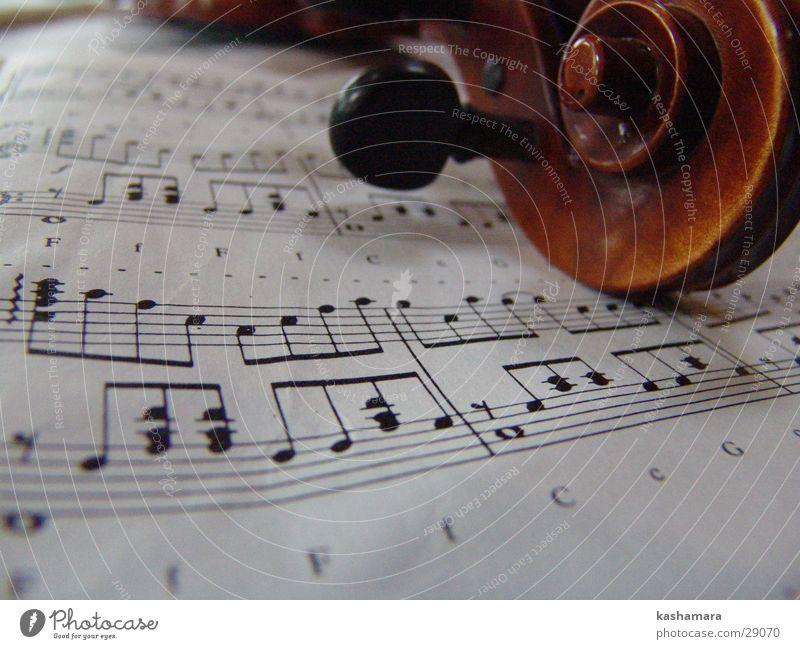 Geigenspiel I Musik Musiknoten Holz braun Bratsche Lied Klassik Saite musizieren Farbfoto Innenaufnahme Detailaufnahme Menschenleer Schwache Tiefenschärfe