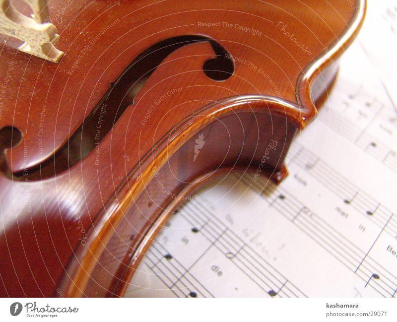 Geigenspiel II Musik Musiknoten Holz braun Bratsche Lied Klassik Klang Saite musizieren Farbfoto Innenaufnahme Detailaufnahme Menschenleer