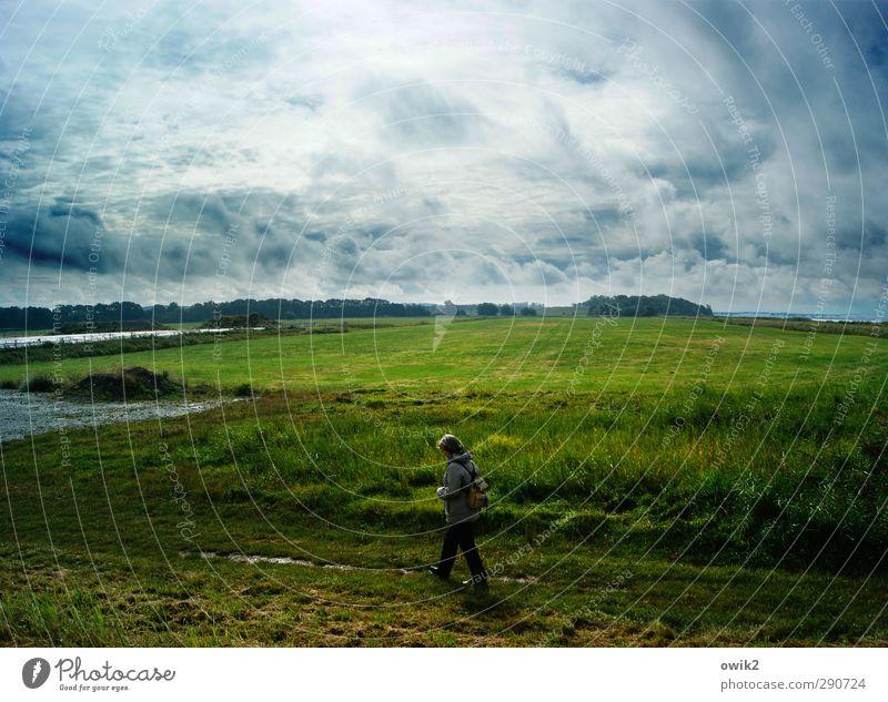 Am Achterwasser Mensch Frau Himmel Natur blau grün Wasser Pflanze Einsamkeit Wolken ruhig Landschaft Wald Erwachsene Umwelt Ferne