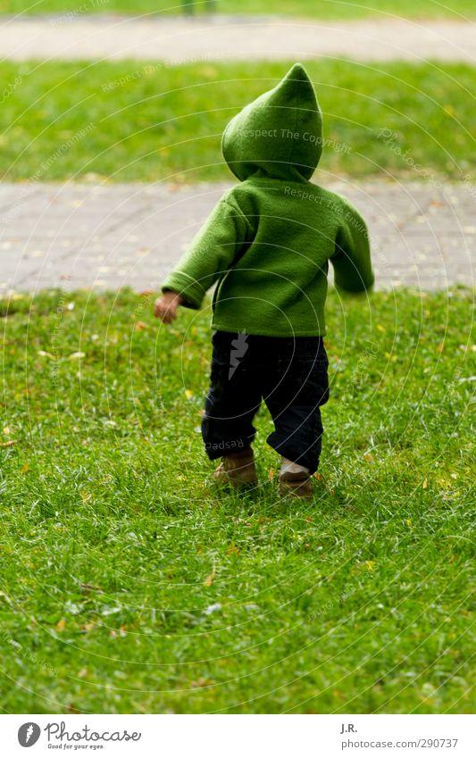 Running Kid Kind grün Freude Wiese Leben Gras Spielen Frühling Glück klein Gesundheit natürlich Park Kindheit laufen Wachstum