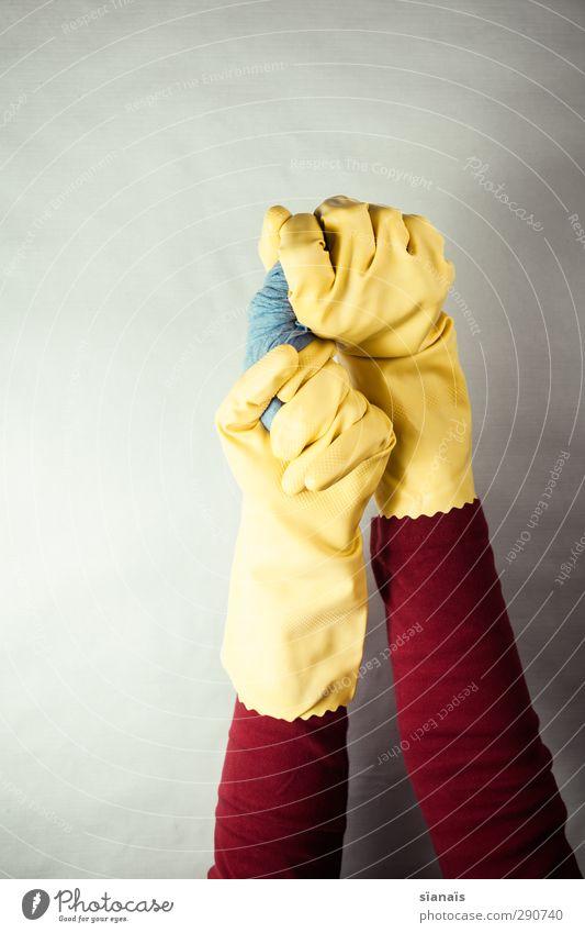 frühjahrsputz Hand 1 Mensch Arbeitsbekleidung Schutzbekleidung Handschuhe nass trocken blau gelb rot Dienstleistungsgewerbe Geschirrspülen Putztuch Raumpfleger