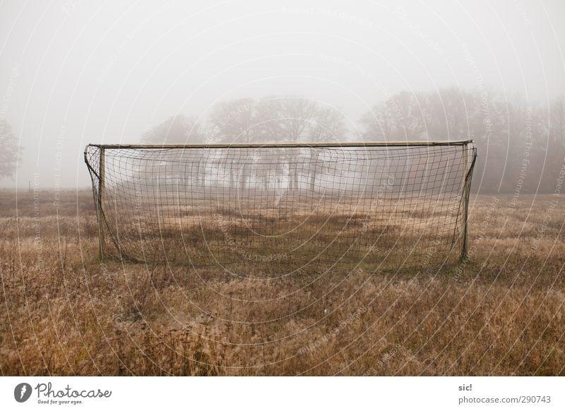 Toooor! Einsamkeit gelb Wiese Herbst Sport Gras grau braun Freizeit & Hobby Nebel Fußball Netz sportlich Dorf Stahl