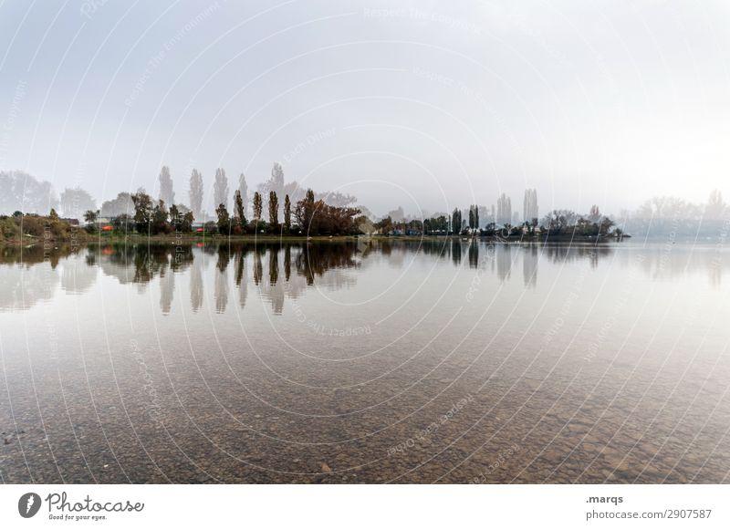 BoBodensee Natur Landschaft Himmel Baum Seeufer außergewöhnlich Freiheit Umwelt Irritation Doppelbelichtung Reflexion & Spiegelung Farbfoto Außenaufnahme