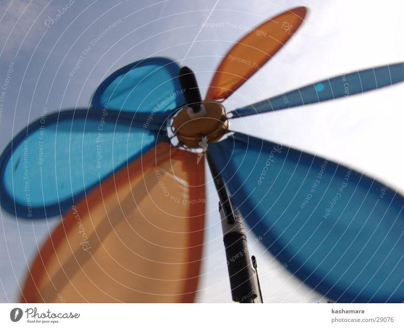 Wind-Blume Himmel Blume blau Sommer gelb Spielen Wind drehen Windrad