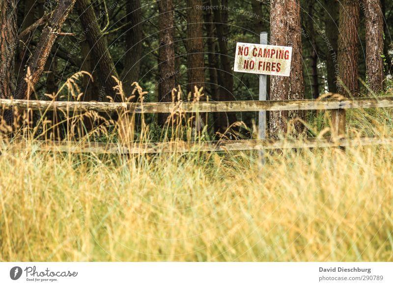 No camping & no fire = :-( Ferien & Urlaub & Reisen Abenteuer Freiheit Camping wandern Natur Landschaft Pflanze Tier Frühling Sommer Herbst Baum Gras Sträucher