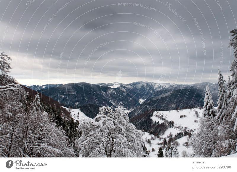Feldberg Tourismus Ausflug Abenteuer Ferne Winterurlaub Natur Landschaft Himmel Gewitterwolken Klima Unwetter Eis Frost Schnee Baum Berge u. Gebirge kalt