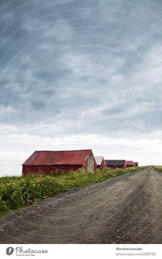 Randerscheinung alt Sommer Meer Einsamkeit Wolken ruhig Landschaft Haus Ferne Wiese Straße Gras Frühling Wege & Pfade Freiheit Küste
