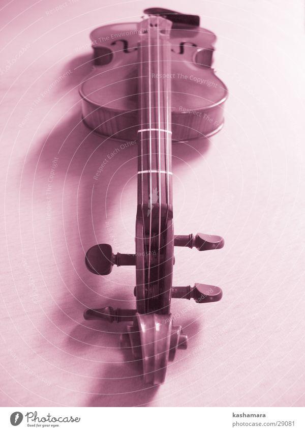 Pink-Violin I Spielen Musik Konzert Orchester Geige Musiknoten Holz violett rosa Menschenleer