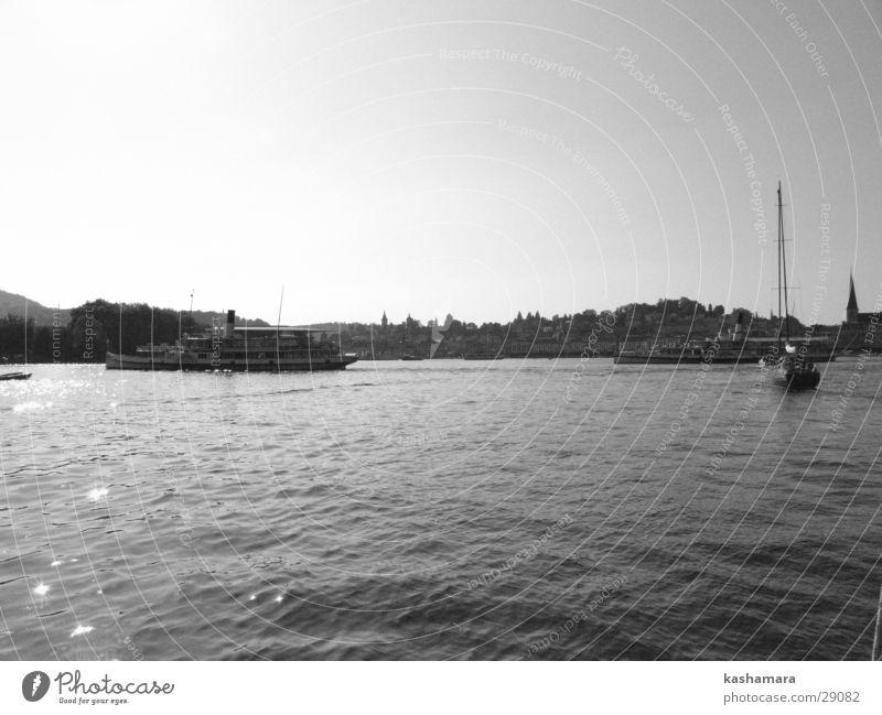 Dampfschiffjagt Wasser weiß Stadt schwarz See Wasserfahrzeug Ausflug Tourismus Schweiz silber Schifffahrt Kleinstadt Städtereise Luzern Vierwaldstätter See