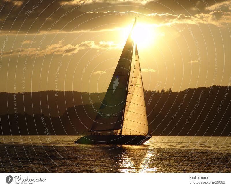 ...sooo schön kann segeln sein... Wasser Himmel Sonne Sommer Wolken gelb Sport See Wasserfahrzeug braun gold Horizont Segeln Sonnenuntergang Segelboot