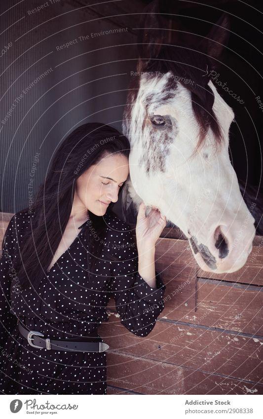 Frau in der Nähe des erstaunlichen Pferdes im Stall Verkaufswagen Jugendliche schön geschlossene Augen attraktiv charmant Kleid berühren Tier Reiterin Hengst