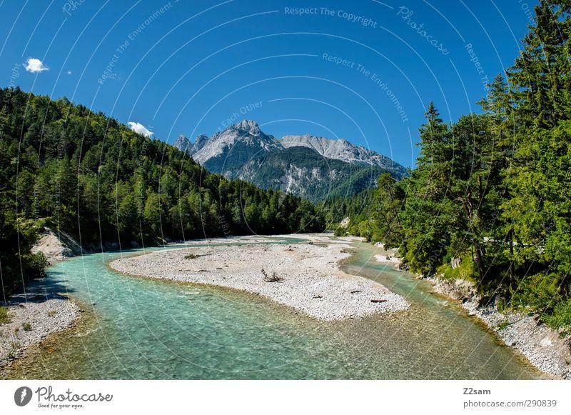 Isarursprung Umwelt Natur Landschaft Wolkenloser Himmel Sommer Schönes Wetter Baum Wald Alpen Berge u. Gebirge Gipfel natürlich Erholung