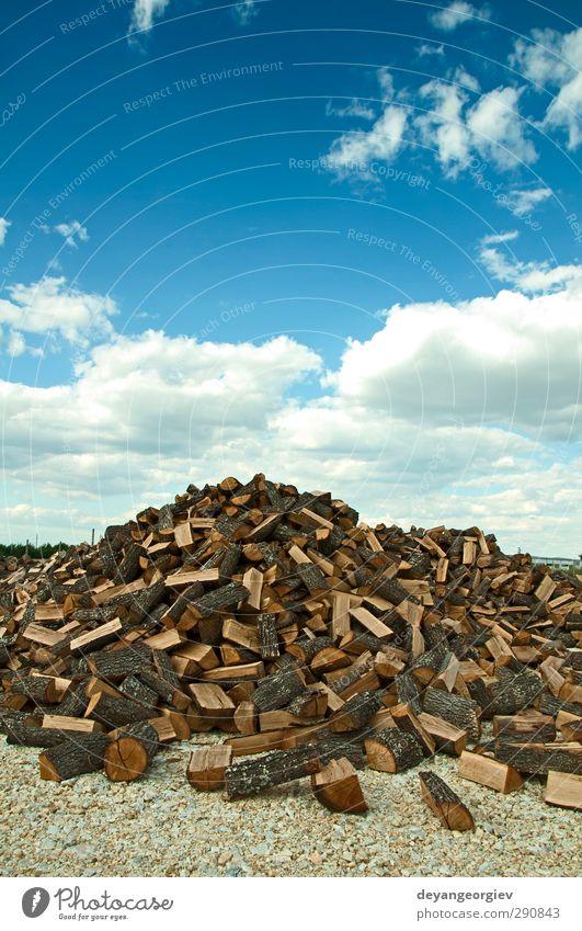 Stapel frisch geschnittener Bäume auf blauem Sku-Hintergrund Industrie Natur Himmel Baum Wald Papier Holz natürlich braun Ende Nutzholz Totholz Anhäufung