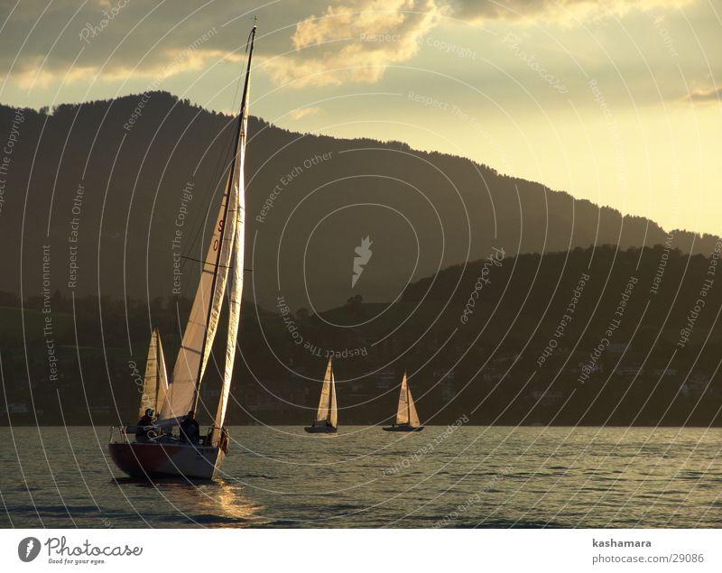 Segel-Regatta Himmel Wasser Wolken gelb Berge u. Gebirge See Horizont Wasserfahrzeug gold Schifffahrt Segeln Segel Segelboot Wassersport Segelschiff Sportveranstaltung