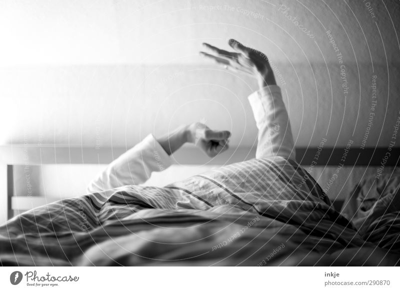 ...till dawn Wohlgefühl Zufriedenheit Erholung ruhig Freizeit & Hobby Häusliches Leben Bett Schlafzimmer Arme Hand 1 Mensch Bettdecke Kissen genießen liegen
