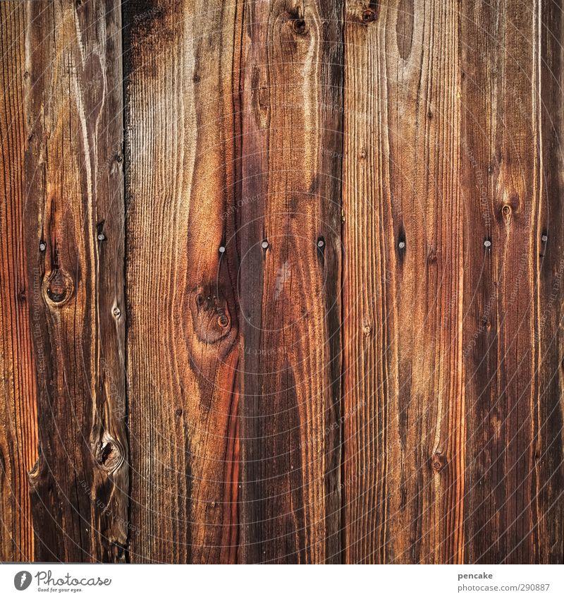 voll das brett nackt Wand Mauer Holz Hütte nah Holzbrett Nagel Holzwand Maserung Holzhütte Holzstruktur