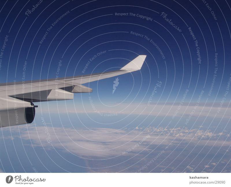 über den Wolken Ferien & Urlaub & Reisen Tourismus Ferne Meer Luftverkehr Erde Himmel Flugzeug im Flugzeug Flugzeugausblick blau Frankreich Farbfoto