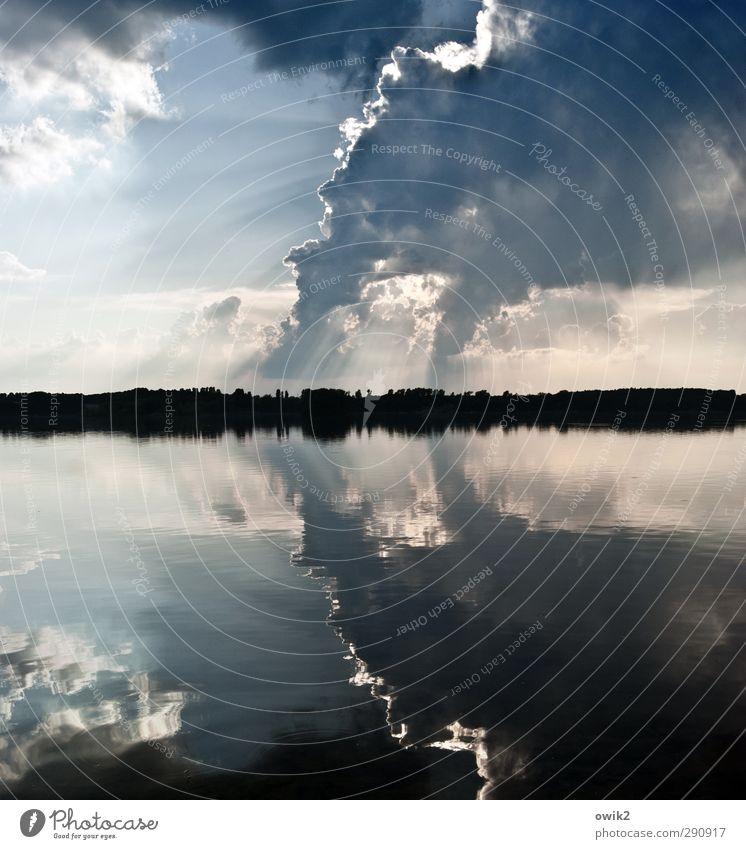 Raucherinsel Umwelt Natur Landschaft Wasser Himmel Wolken Horizont Klima Wetter Schönes Wetter Wald See Idylle Umweltverschmutzung Ferne Wasseroberfläche Abgas