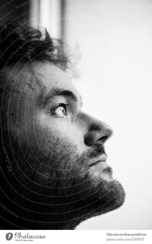lost in thoughts Wohnung maskulin Junger Mann Jugendliche Erwachsene Leben Kopf Haare & Frisuren Gesicht Bart 18-30 Jahre Dreitagebart Denken Gefühle Sorge