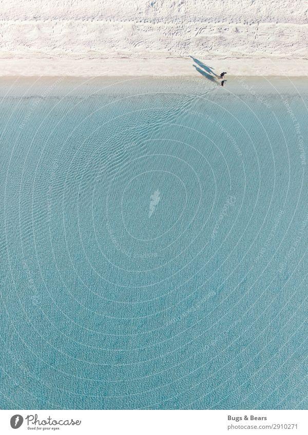 Strandspaziergang Ferien & Urlaub & Reisen Tourismus Ausflug Abenteuer Ferne Freiheit Sommer Sommerurlaub Sonne Meer Insel Paar Partner 2 Mensch Natur Sand