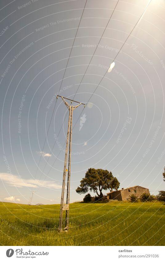 Noch 11 Wochen bis zur Sommerzeit Himmel Sonne Schönes Wetter Wärme Baum Gras Wiese Feld Haus Gebäude leuchten ästhetisch Strommast blau grün Naturstein Kabel