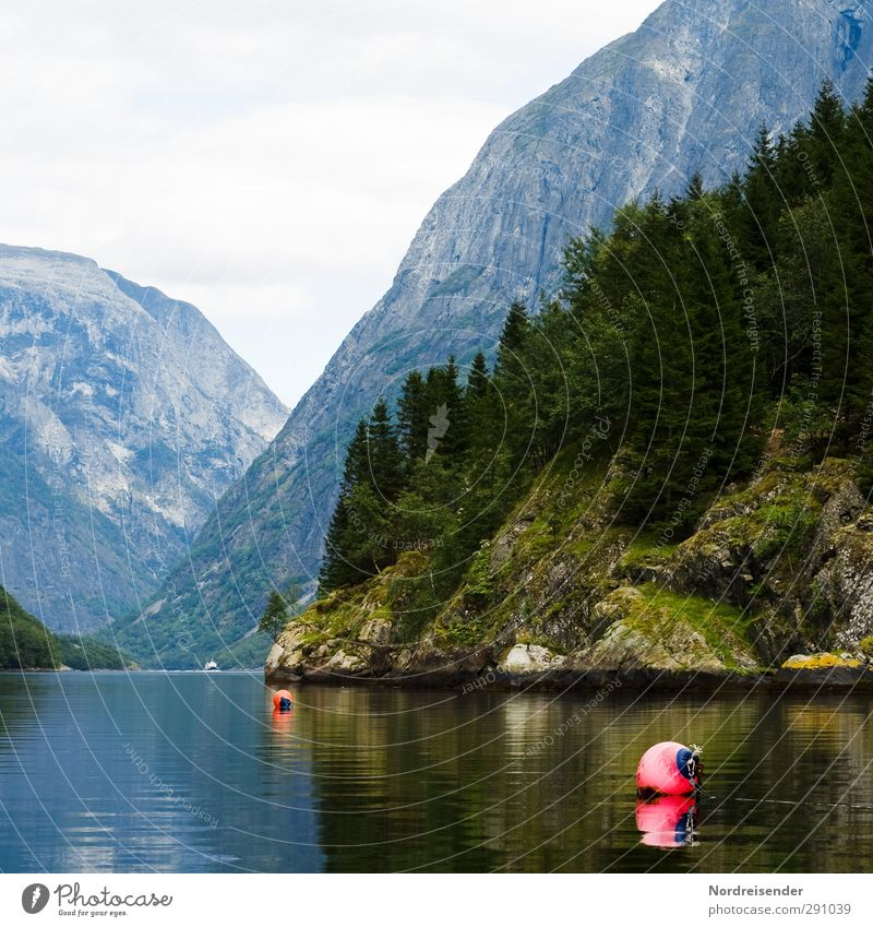 Wasserstraßen Natur Ferien & Urlaub & Reisen Sommer Einsamkeit ruhig Landschaft Erholung Wald Ferne Berge u. Gebirge Freiheit Küste Felsen Tourismus Insel