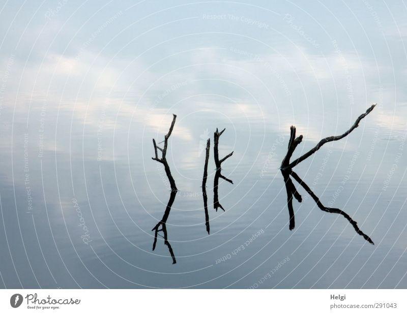 geheime Botschaft... Himmel Natur blau alt Wasser weiß Sommer Einsamkeit Wolken ruhig schwarz Umwelt Senior Holz See Stimmung