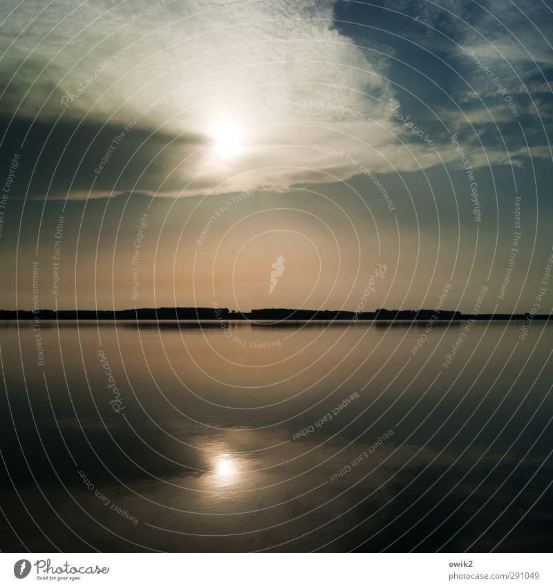 Nichtraucherinsel Umwelt Natur Landschaft Wasser Himmel Wolken Horizont Sonnenlicht Klima Wetter Schönes Wetter Wärme Wald See leuchten ruhig Zufriedenheit