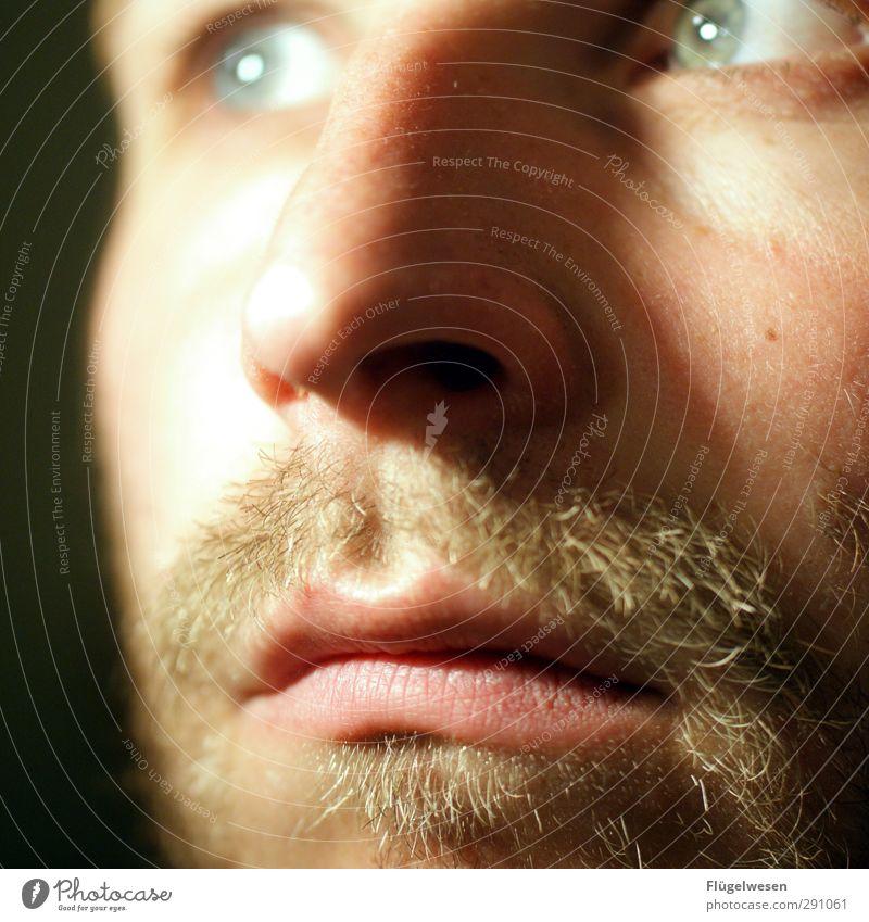 Dreitagebart Mensch maskulin Kopf Bart 1 18-30 Jahre Jugendliche Erwachsene warten nachhaltig natürlich Frühlingsgefühle Traurigkeit Sorge Platzangst