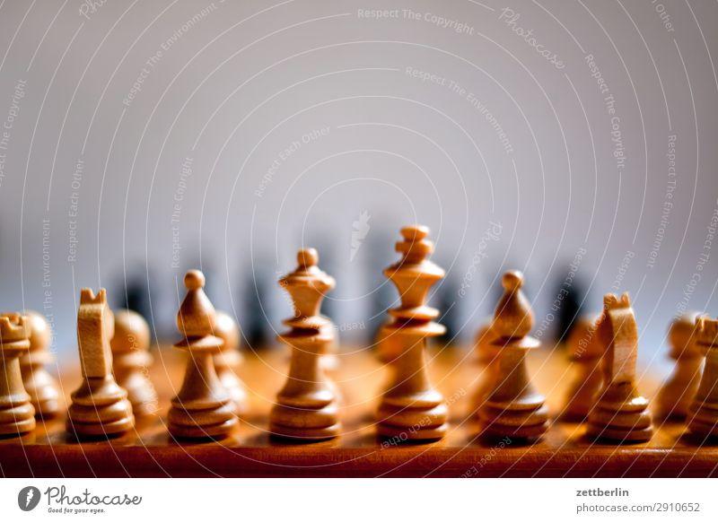 Schach again weiß schwarz Spielen Beginn Turm Tiefenschärfe Landwirt kämpfen Läufer Spielfigur König Anordnung Schachbrett Schachfigur Gegner