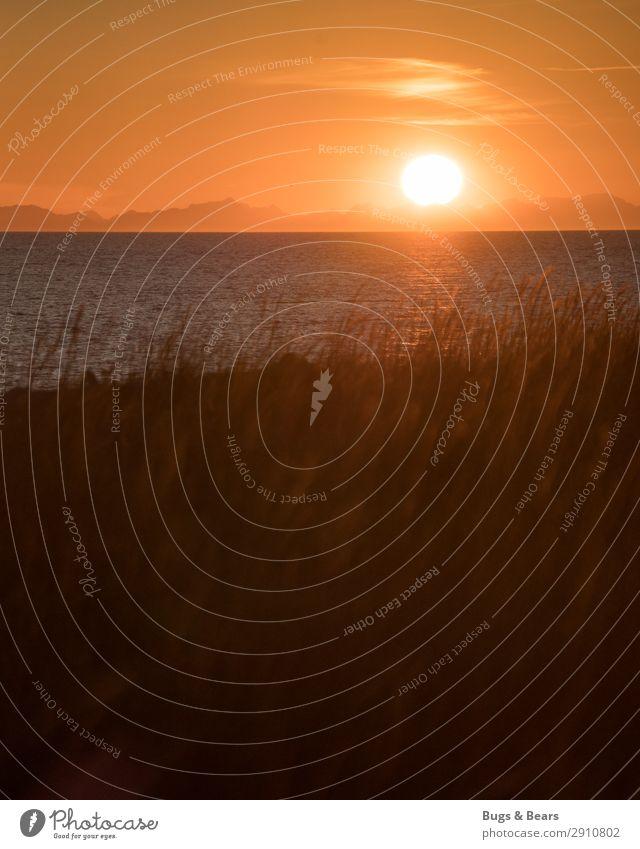 An der Küste Natur Landschaft Wasser Sonne Sonnenaufgang Sonnenuntergang Gras Strand Bucht Nordsee Ostsee Meer Insel ästhetisch Ende Erholung Glaube