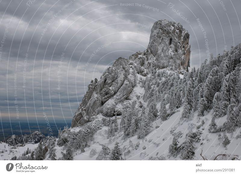 Eisberg Ferien & Urlaub & Reisen Tourismus Ausflug Winter Schnee Winterurlaub Berge u. Gebirge Klettern Bergsteigen Landschaft Himmel Wolken Frost Baum Felsen