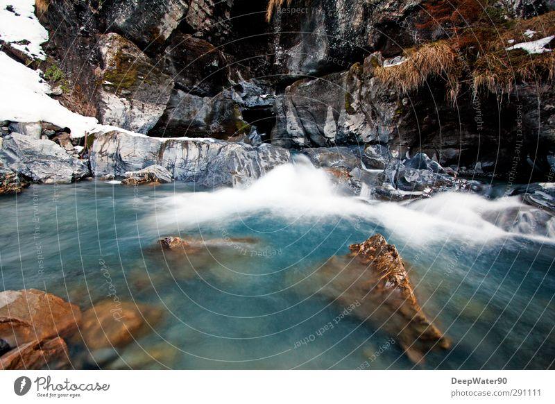 Quelle Umwelt Natur Wasser Winter Schnee Pflanze Gras Moos Felsen Schlucht Wellen Fluss Wasserfall Abenteuer Farbfoto Außenaufnahme Menschenleer Tag Schatten