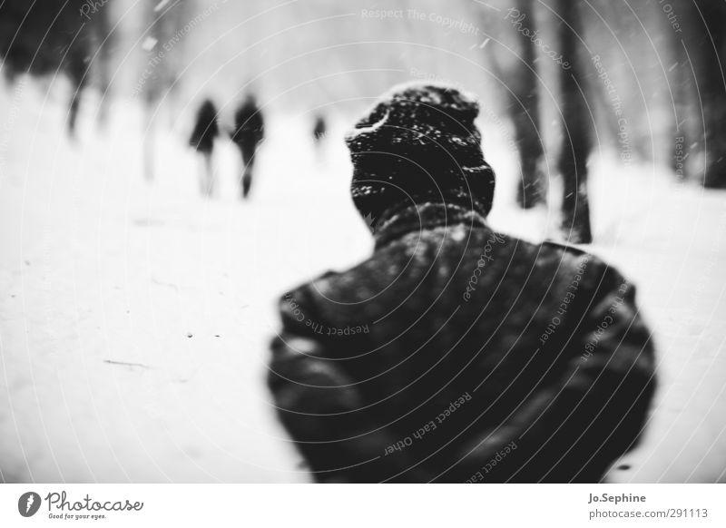 colder Mensch 3 Winter Wetter Schneefall Wald Mantel Mütze gehen laufen kalt lensbaby Spaziergang Schwarzweißfoto Außenaufnahme Tag Unschärfe