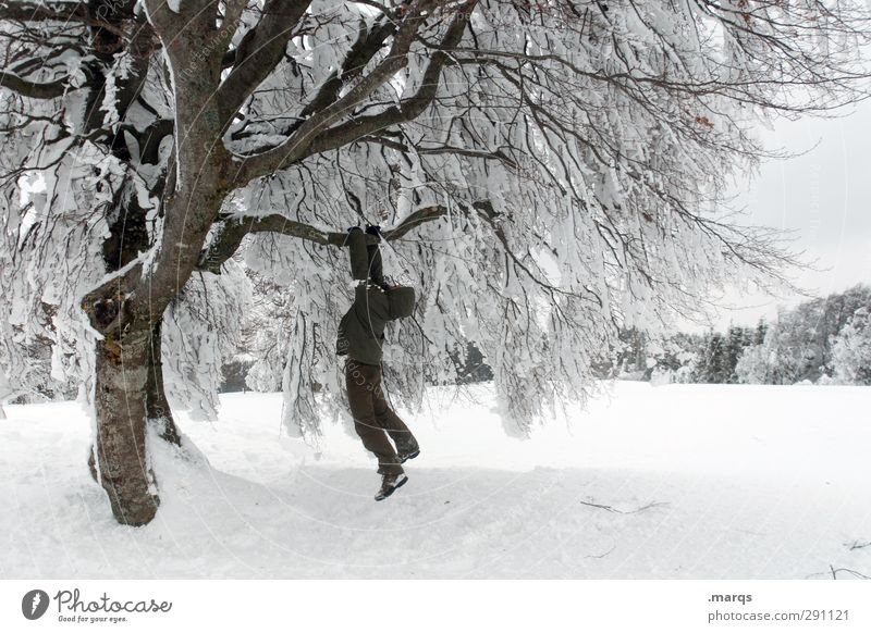 Abhängen Mensch Natur Ferien & Urlaub & Reisen Baum Freude Winter Landschaft Erwachsene Umwelt kalt Schnee Leben Eis außergewöhnlich Wetter maskulin