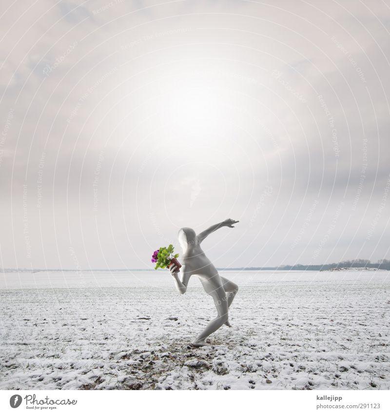 frühlingsbote Mensch maskulin Mann Erwachsene Körper 1 Umwelt Natur Landschaft Pflanze Frühling Winter Blume Topfpflanze Feld werfen grau grün violett rosa